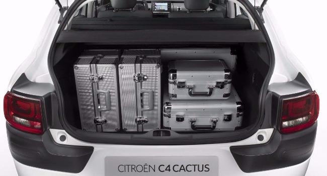 C4 Cactus Essence Semi-Automatique 2017